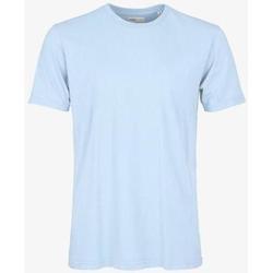 Abbigliamento T-shirt maniche corte Colorful Standard T-shirt  Polar Blue bleu pâle