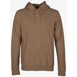 Abbigliamento Felpe Colorful Standard Sweatshirt à capuche  Sahara Camel marron clair