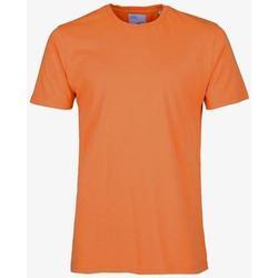 Abbigliamento T-shirt maniche corte Colorful Standard T-shirt  Burned Orange orange