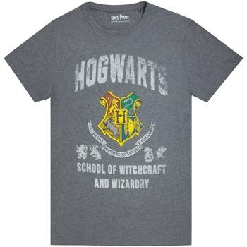 Abbigliamento Uomo T-shirt maniche corte Harry Potter  Carbone