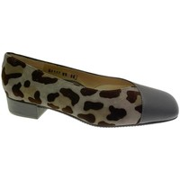 Scarpe Donna Ballerine Calzaturificio Loren LOA1117 grigio