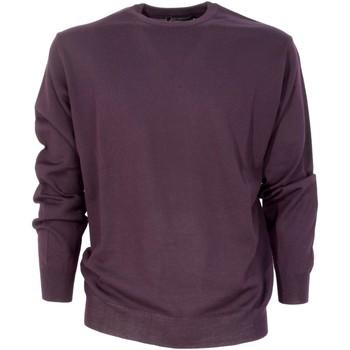 Abbigliamento Uomo Maglioni Bramante MPN-001308 Altri