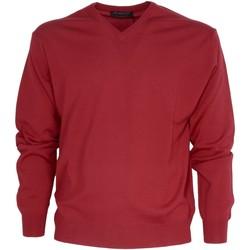 Abbigliamento Uomo Maglioni Bramante MPN-001300 Rosso