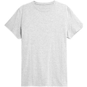 Abbigliamento Uomo T-shirt maniche corte 4F TSM352 Grigio