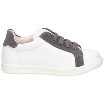 Scarpe Bambino Sneakers basse Gioiecologiche 5131 BAINCO/GRIGIO