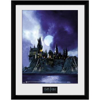 Casa cornici foto Harry Potter TA7615 Multicolore