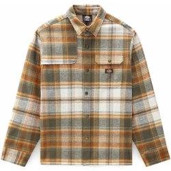 Abbigliamento Uomo Camicie maniche lunghe Dickies DK0A4XGUMGR1 Verde
