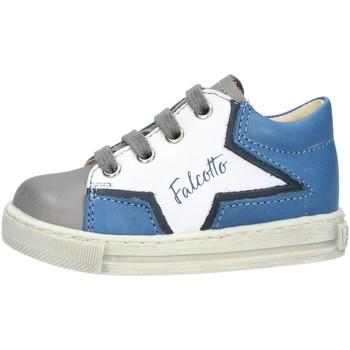 Scarpe Bambino Sneakers basse Falcotto 0012016189 SNEAKERS  Bambino DARK GREY DARK GREY