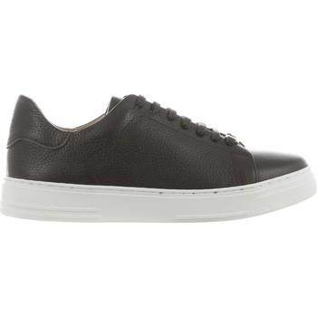 Scarpe Uomo Sneakers basse Marechiaro 103475 Testa di moro