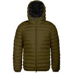 Abbigliamento Uomo Piumini Invicta 4431806/U Verde