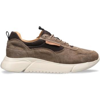 Scarpe Uomo Sneakers basse Docksteps DSM000100 Marrone