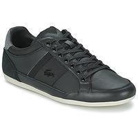 Sneakers basse Lacoste CHAYMON 116 1