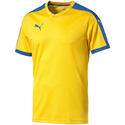 Abbigliamento T-shirt maniche corte Puma Pitch Shortsleeved Shirt