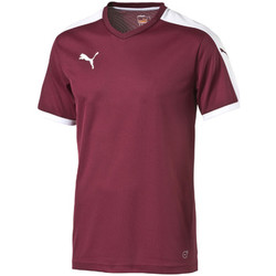 Abbigliamento T-shirt maniche corte Puma Pitch Shortsleeved Shirt Multicolore