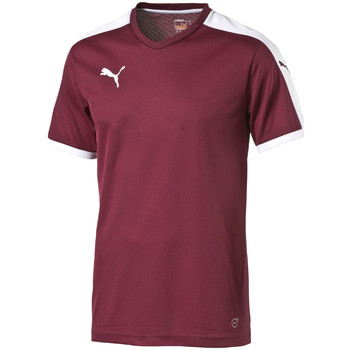 T-shirt Puma  Pitch Shortsleeved Shirt