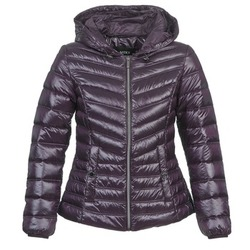 Abbigliamento Donna Piumini Mexx MX3000550 Melanzana