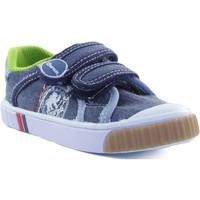Scarpe Unisex bambino Sneakers basse Gorila STONE MOSS AZUL