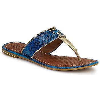 Scarpe Donna Sandali Juicy Couture ADELINE Bright / Blue / Snake