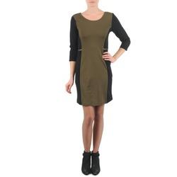 Abbigliamento Donna Abiti corti La City ROKAMIL Kaki / Nero