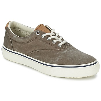 Scarpe Sperry Top-Sider  STRIPER CVO