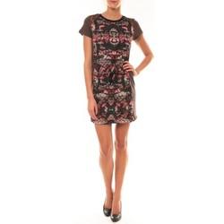 Abbigliamento Donna Abiti corti Custo Barcelona Robe Laize Licorice marron Marrone