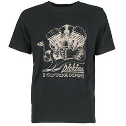 Abbigliamento Uomo T-shirt maniche corte Dickies BRIDGEVILLE Nero