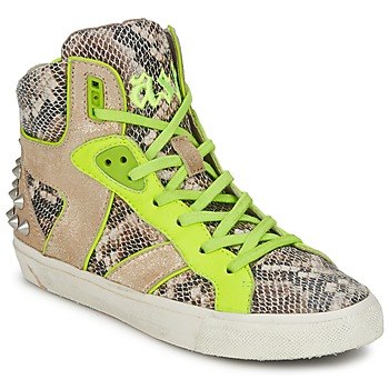 Scarpe Donna Sneakers alte Ash SONIC Python / Giallo