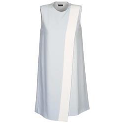 Abbigliamento Donna Abiti corti Joseph SOL Grigio / Bianco