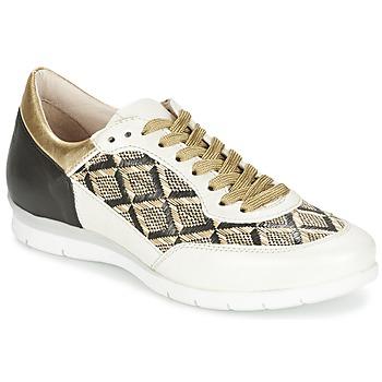 Scarpe Donna Sneakers basse Mjus FORCE Nero / Bianco / DORE