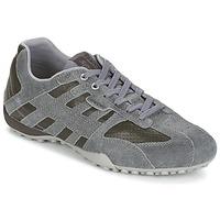 Sneakers basse Geox SNAKE K