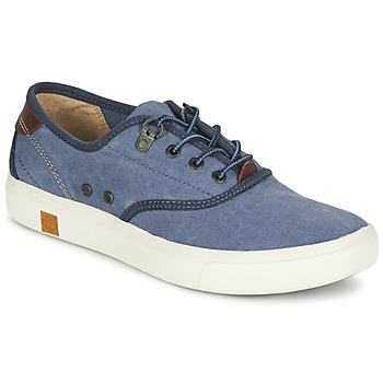 Scarpe Donna Sneakers basse Timberland AMHERST OXFORD Blu
