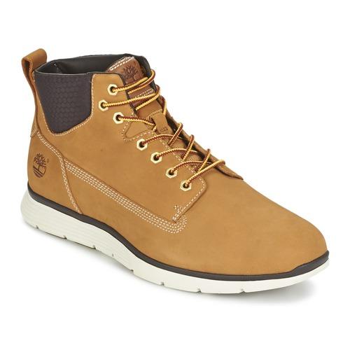 scarpe timberland chukka