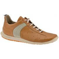 Scarpe Uomo Sneakers alte Docksteps Slide Bassa Casual multicolore