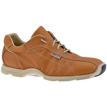 Scarpe Uomo Sneakers alte Docksteps SpotBassaCasualSneakers camel