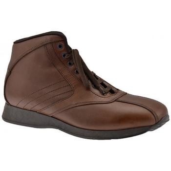 Scarpe Uomo Sneakers alte Docksteps Globe Alta Casual marrone