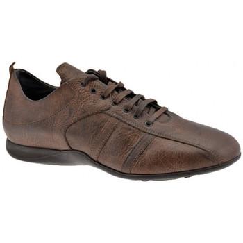 Scarpe Uomo Sneakers alte Docksteps ZybraSoccerStyleCasualSneakers testa di moro