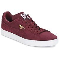 Scarpe Uomo Sneakers basse Puma SUEDE CLASSIC + Bordeaux