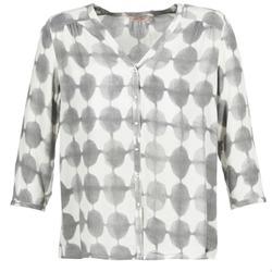 Abbigliamento Donna Camicie DDP GOSA Taupe / Ecru