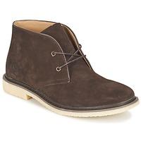 Scarpe Uomo Stivaletti Cool shoe DESERT BOOT Marrone