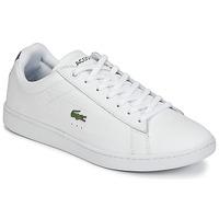 Sneakers basse Lacoste CARNABY EVO G316 7 SPM