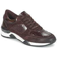 Scarpe Donna Sneakers basse Dream in Green FARRICA Bordeaux