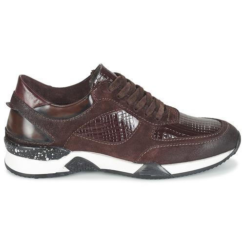 Farrica Green Consegna Donna 4500 Bordeaux In Scarpe Gratuita Basse Dream Sneakers yIYm6gb7fv