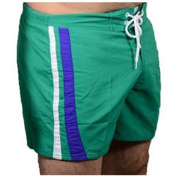 Abbigliamento Uomo Shorts / Bermuda Speedo Retro Costumi mare verde