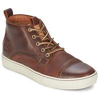 Scarpe Uomo Sneakers alte Timberland CAP TOE CHUKKA Rosso / Fg