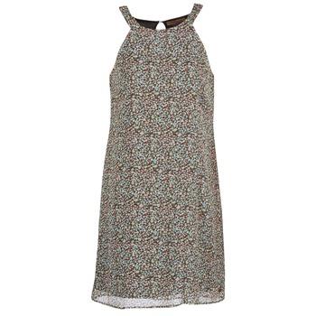 Abbigliamento Donna Abiti corti DDP DAMERIA Multicolore
