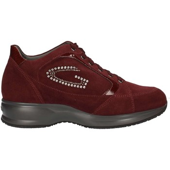 Scarpe Donna Sneakers basse Alberto Guardiani SD51371B/W/SV38 BORDEAUX