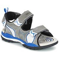 Scarpe Bambino Sandali sport Geox J BOREALIS B. D Grigio / Blu