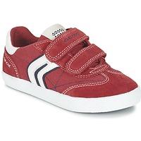 Scarpe Bambino Sneakers basse Geox J KIWI B. M Rosso / Marine
