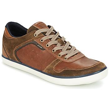 Scarpe Uomo Sneakers basse Geox BOX C Marrone