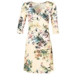 Abbigliamento Donna Abiti corti Cream ROSEMARY Multicolore
